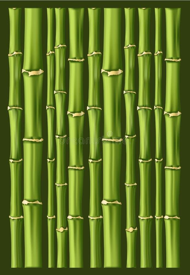 De achtergrond van het bamboe royalty-vrije illustratie