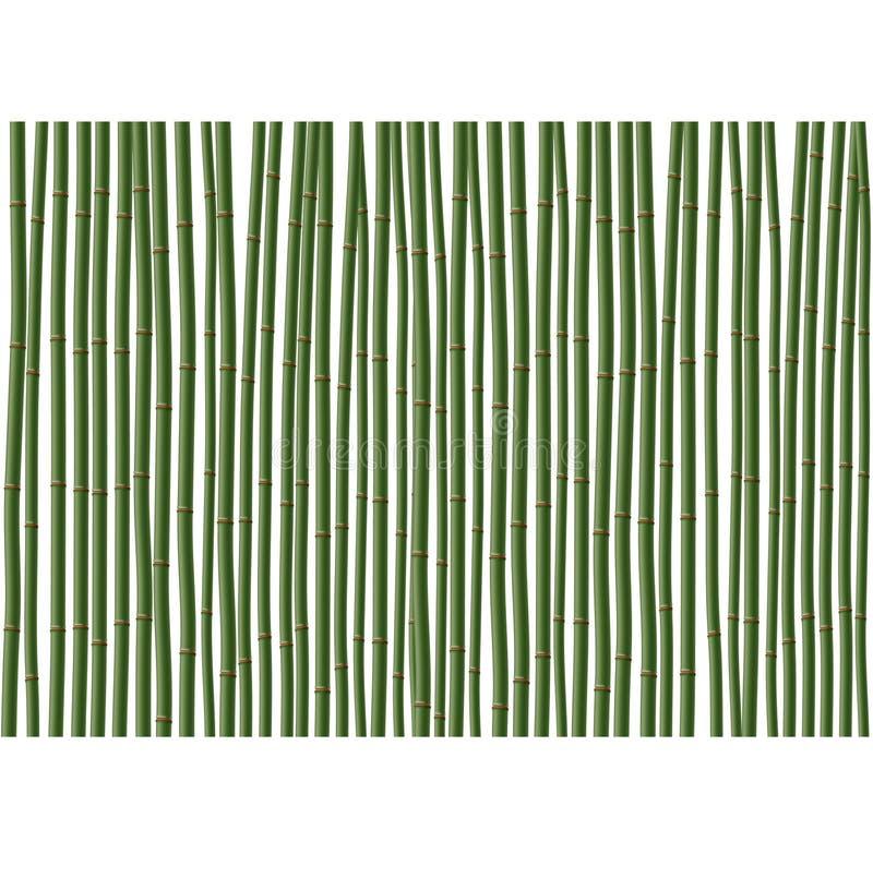 De achtergrond van het bamboe (bos) stock illustratie