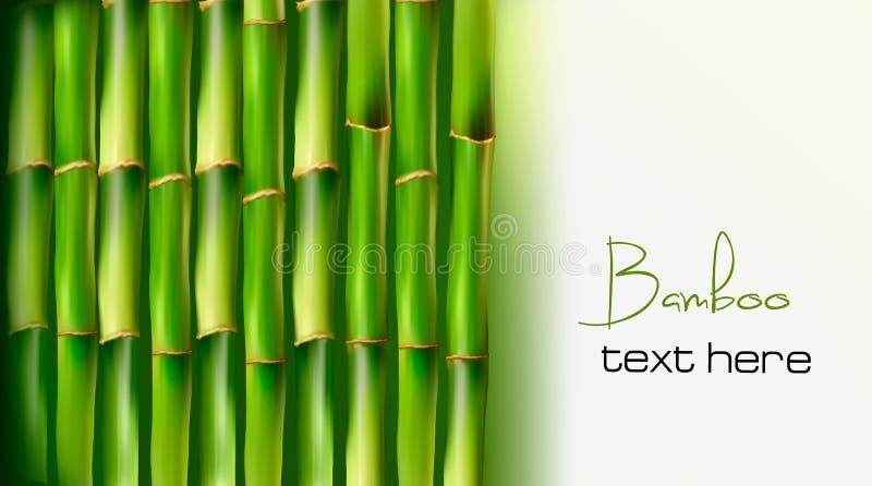 De achtergrond van het bamboe. Vector vector illustratie