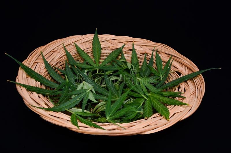 De Achtergrond van het cannabisblad royalty-vrije stock afbeelding