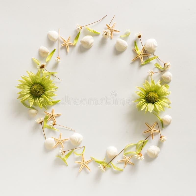 De achtergrond van het cirkelkader van de zomerelementen - zeeschelp, zeesterren, bloemen stock afbeelding