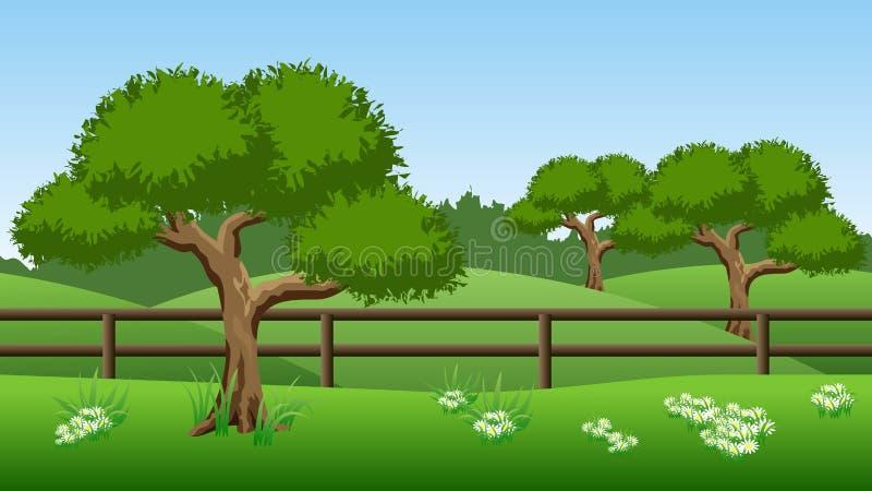 De achtergrond van het de zomerlandschap met groene bomen, heuvels en chamomil vector illustratie