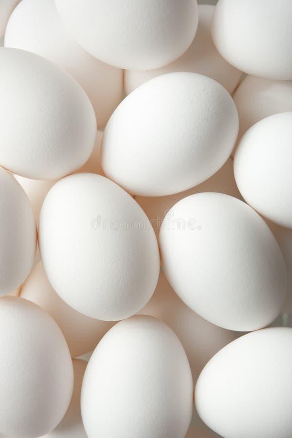 De Achtergrond van het ei stock afbeelding