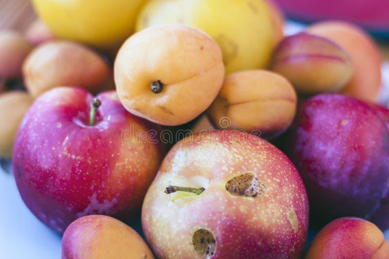 De achtergrond van het fruit De gele en blauwe pruimen, abrikozen, perziken sluiten omhoog stock foto