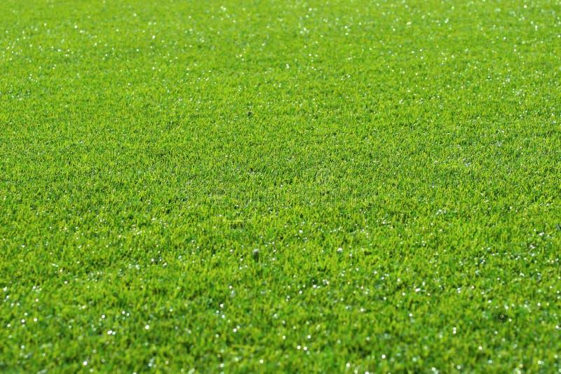 De Achtergrond van het gras
