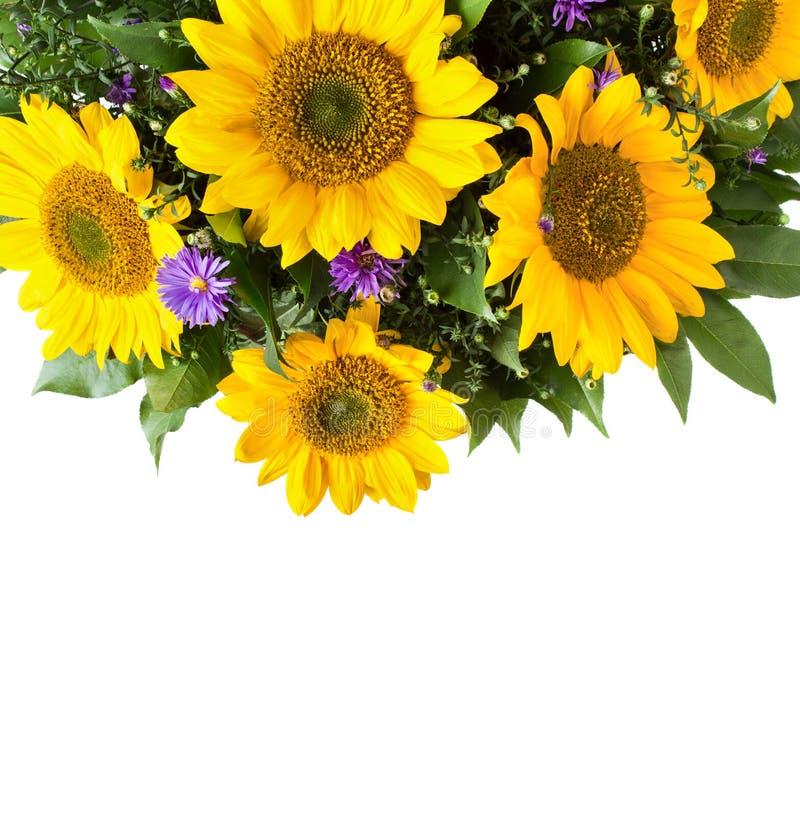 De achtergrond van het zonnebloemboeket stock afbeelding