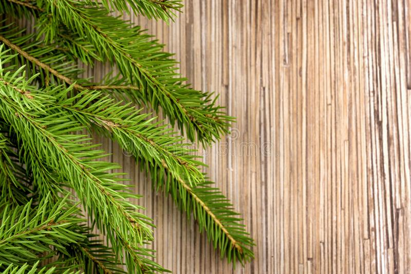 De achtergrond van de Kerstmistijd van de sparrentak stock fotografie