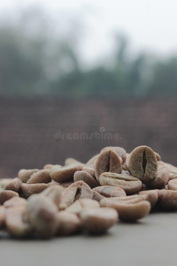 De achtergrond van koffiebonen met nadruk op koffie royalty-vrije stock fotografie