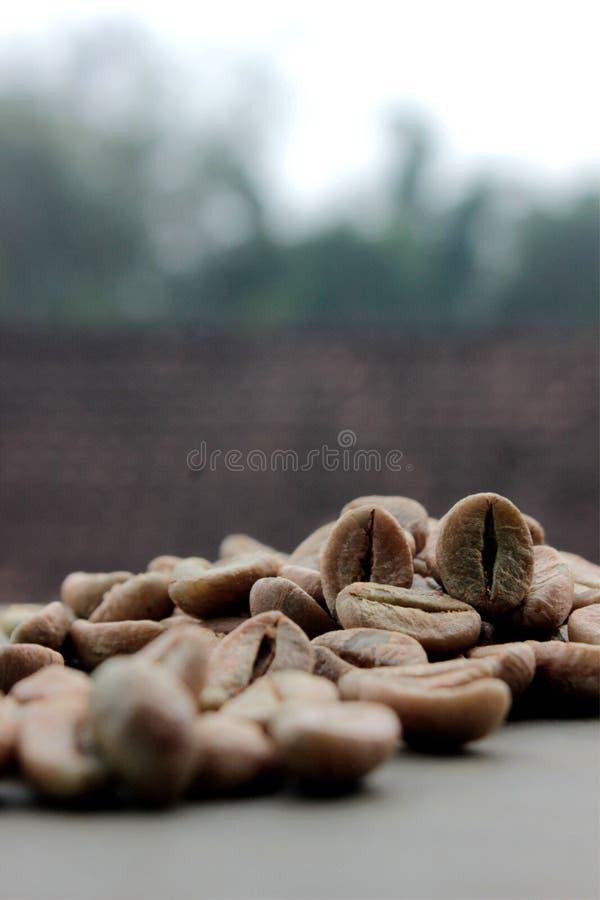 De achtergrond van koffiebonen met nadruk op koffie royalty-vrije stock afbeelding