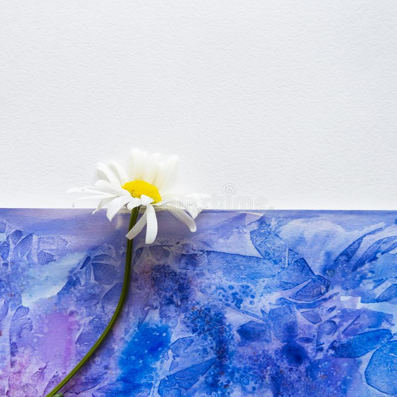 De achtergrond van de kunstwaterverf Hand getrokken textuur Document en bloem stock fotografie