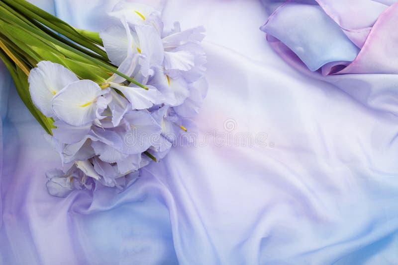 De achtergrond van de de lenteaard met mooie irisbloemen stock foto's