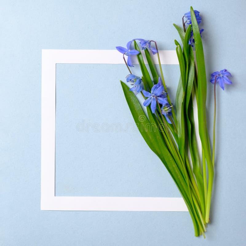 De achtergrond van de de lenteverkoop met mooi bloem en grenskader Malplaatje van banner, uitnodigingskaart, affiche, brochure, b royalty-vrije stock afbeeldingen