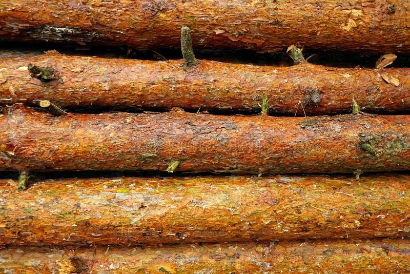 De achtergrond van logboeken Natte houten logboeken na regen royalty-vrije stock afbeelding