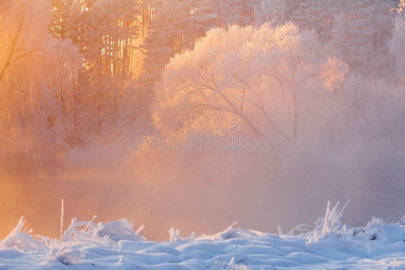 De achtergrond van de winter  Heldere Kerstmisachtergrond royalty-vrije stock afbeelding