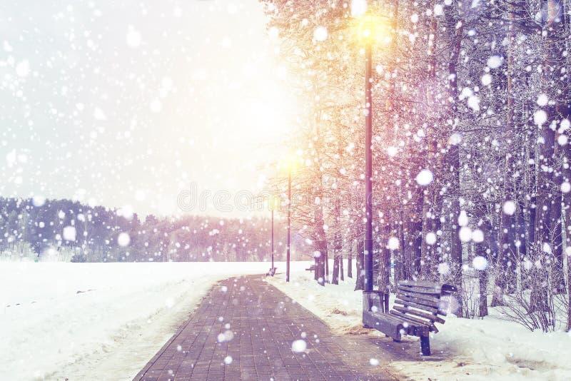De achtergrond van de winter Sneeuwval in Kerstmispark op zonsondergang Sneeuwvlokken die op sneeuw boskerstmis en Nieuwjaarthema royalty-vrije stock fotografie