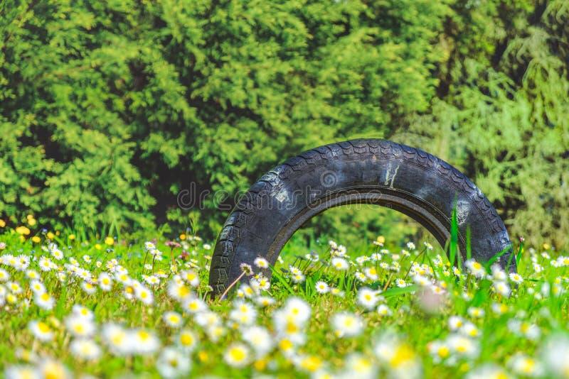 De achtergrond van de de zomerband betreedt versleten aard stock fotografie