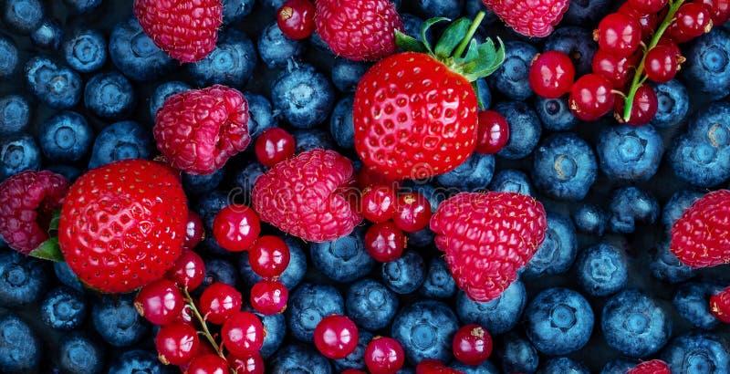 De achtergrond van de zomerbessen Verse Bessenmengeling met Aardbei, Framboos, Rode aalbes, Bosbes en Blackberry, hoogste mening stock foto