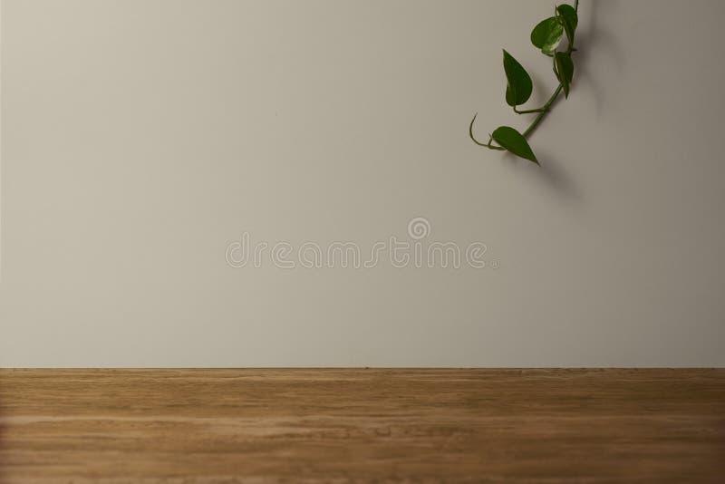 De achtergrond voor advertenties met een bruine lijst en een witte muur, heeft vegetatie stock foto