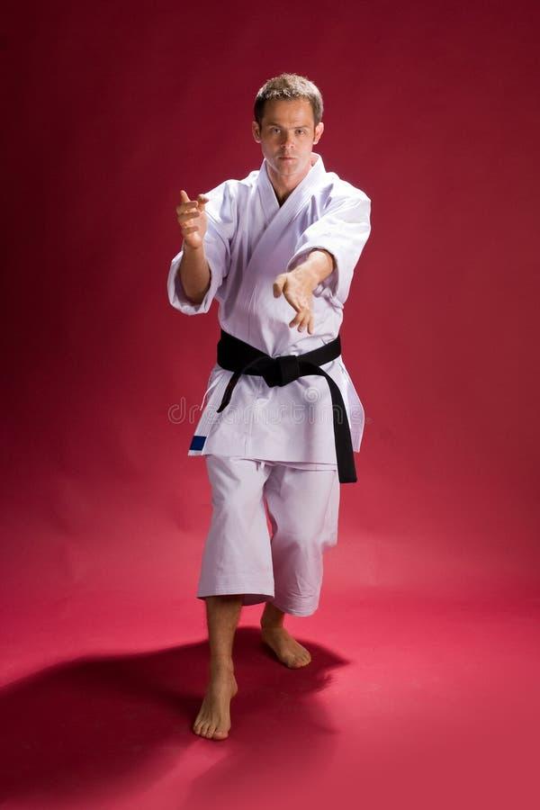 De Actie van de karate royalty-vrije stock afbeeldingen