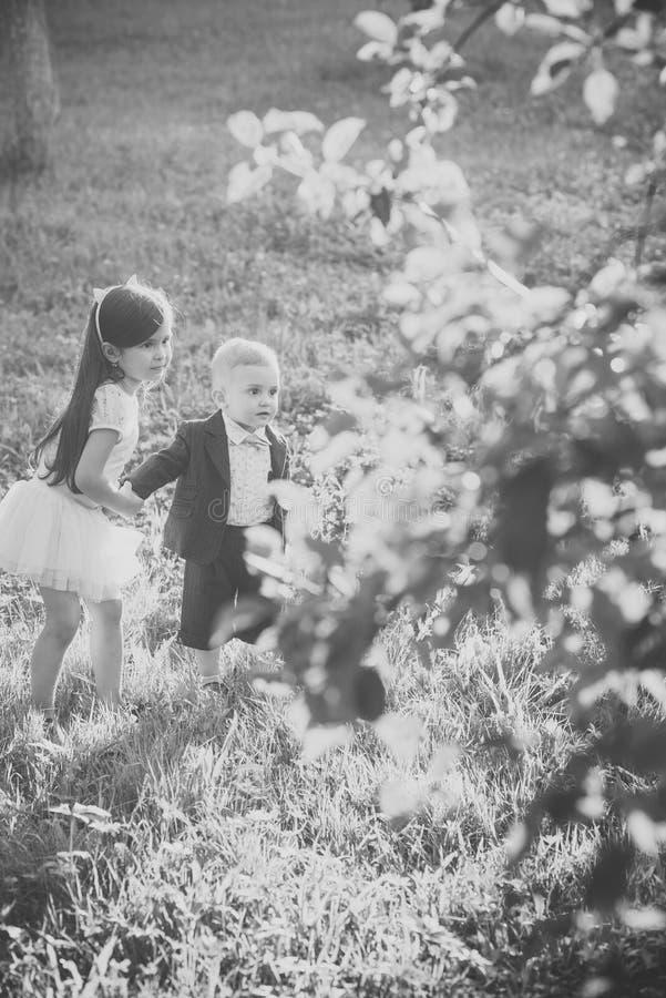 De actieve kinderen spelen op de zomerdag, activiteit royalty-vrije stock foto