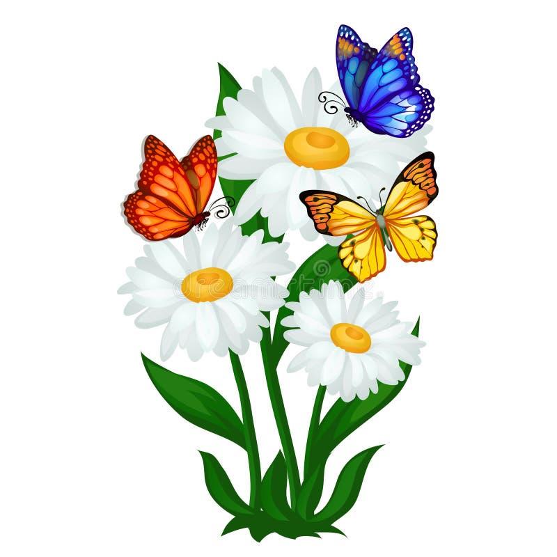 De afficheschets op een de zomerthema met kamille bloeit en kleurrijke die vlinders op witte achtergrond worden geïsoleerd Vector stock illustratie
