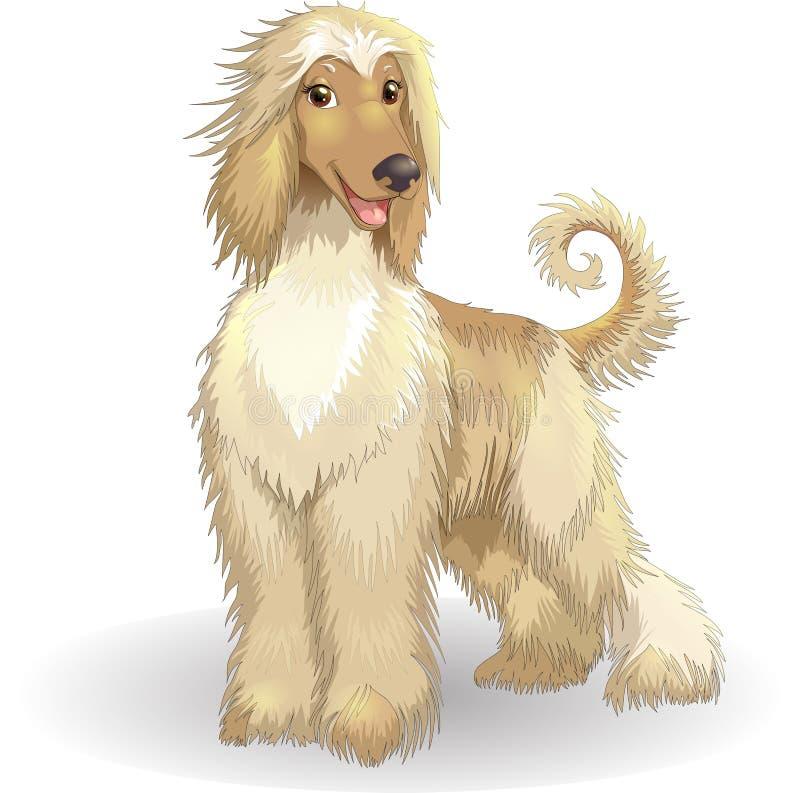 De Afghaanse vrolijke rashond van de honden vectorillustratie stock illustratie