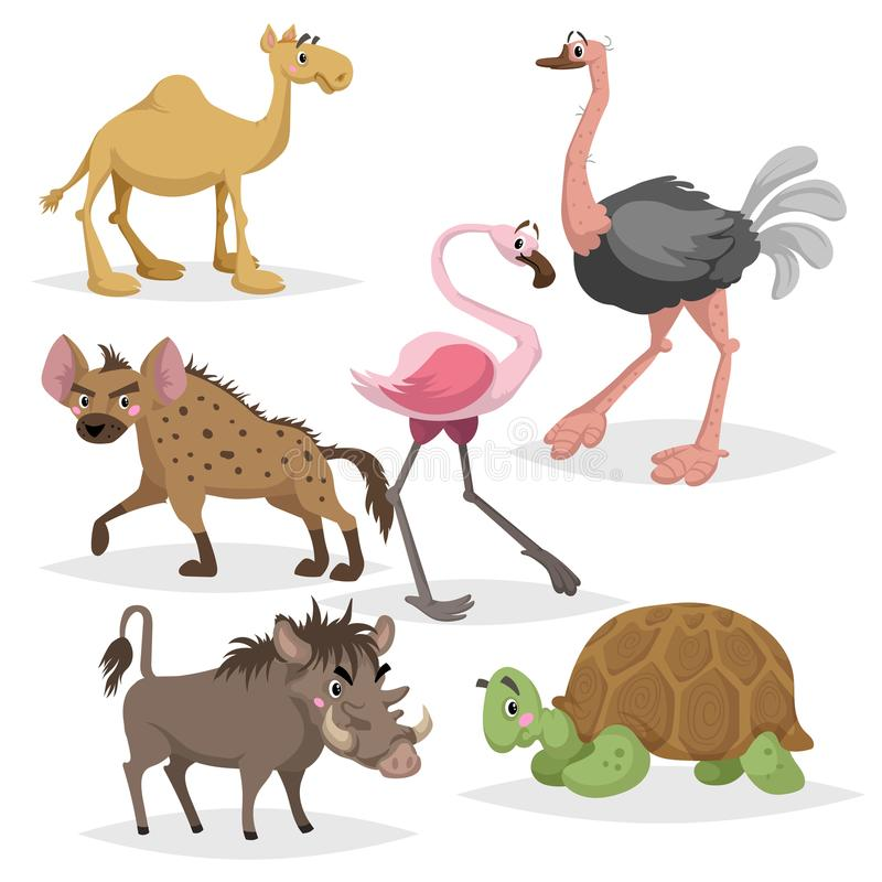 De Afrikaanse reeks van het dierenbeeldverhaal Kameel, grote Afrikaanse schildpad, flamingo, hyena, wrattenzwijn en struisvogel D stock illustratie