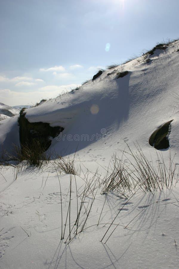 De afwijking van het gras & van de sneeuw stock afbeeldingen