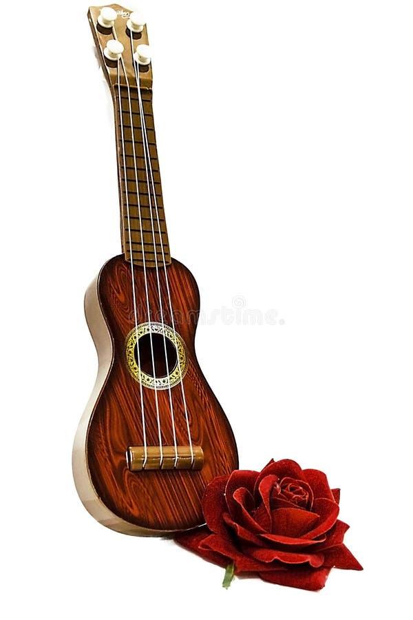 De akoestische die gitaar en rood nam bloem toe, op wit wordt geïsoleerd stock fotografie
