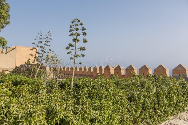 De Alcazaba trädgårdarna arkivbilder