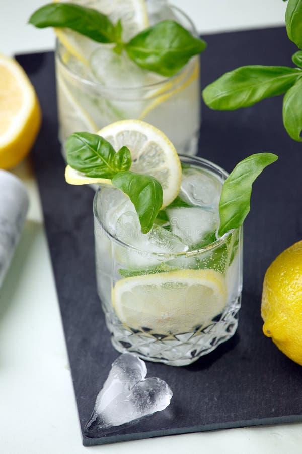 De alcohol of niet het de alcoholcitroen en basilicum drinken, gegoten water of jin cocktail, verfrissingdrank, de barmenu van de royalty-vrije stock fotografie