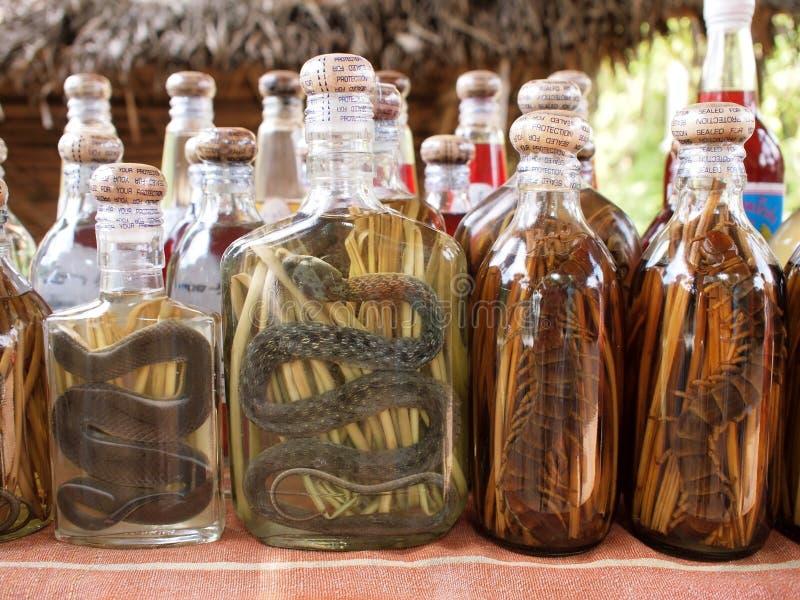 De alcoholische drank van de slang stock foto