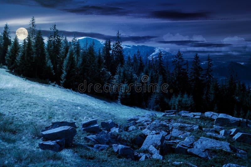 De alpiene samenstelling van het de zomerlandschap bij nacht in volle maanlicht stock fotografie