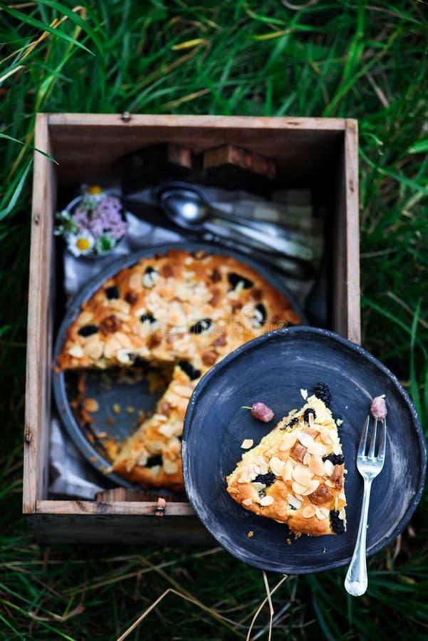 De amandelcake van de moerbeiboom witte chocolade Openlucht foto royalty-vrije stock afbeelding