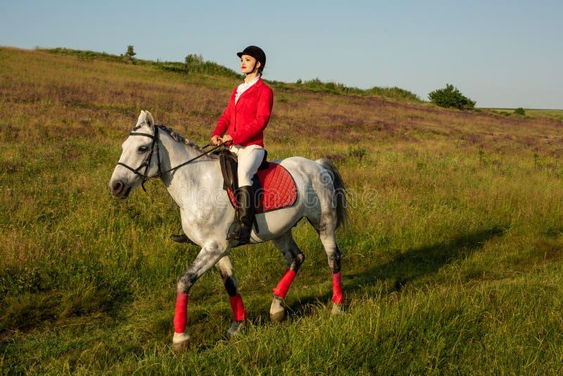 De amazone op een rood paard Ruiter op een paard Paard Racing Ruiter op een paard royalty-vrije stock foto