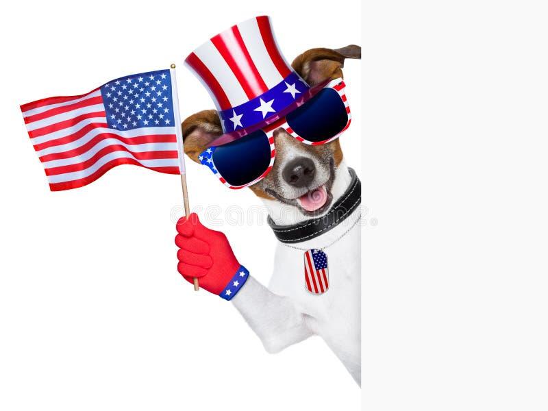 De Amerikaanse hond van de V.S. stock afbeelding
