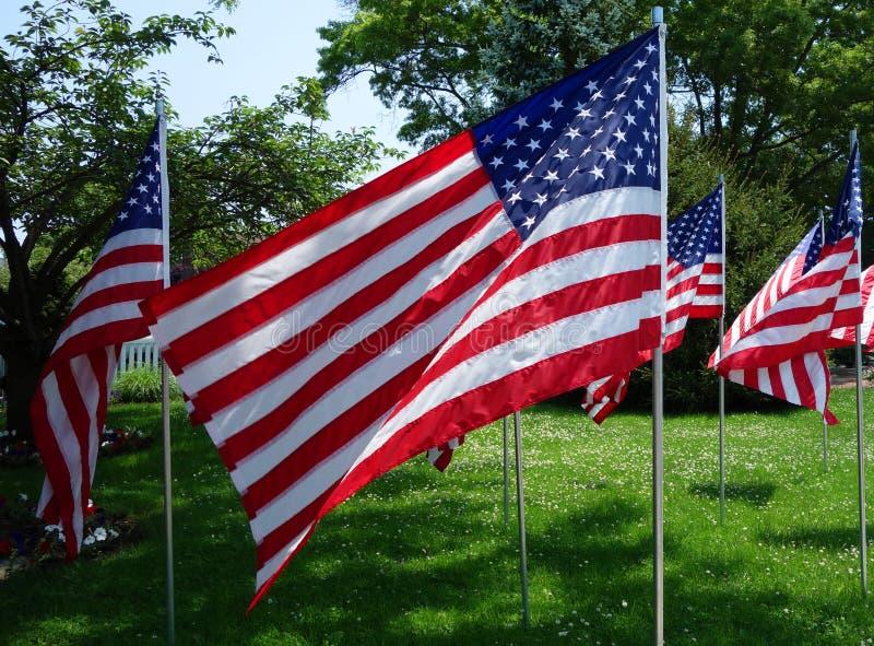 De Amerikaanse Vlaggen in de wind stock foto's