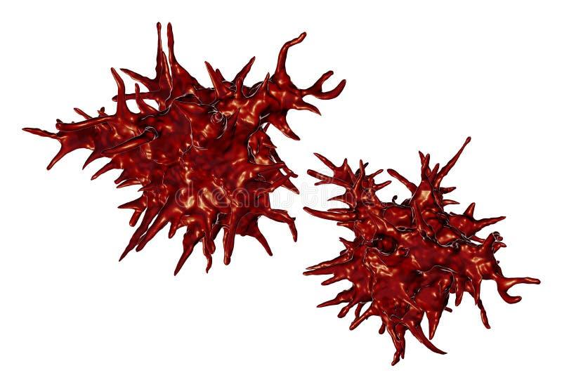 De amoebe van Acanthamoebacastellanii stock illustratie