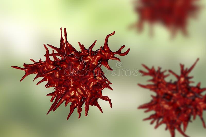 De amoebe van Acanthamoebacastellanii vector illustratie