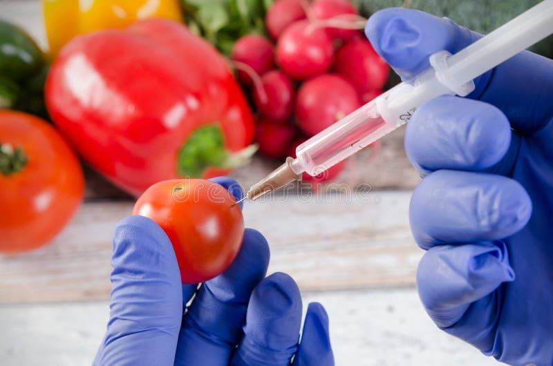 De analist spuit vloeistof in appel in Genetisch gewijzigd voedselconcept royalty-vrije stock foto's