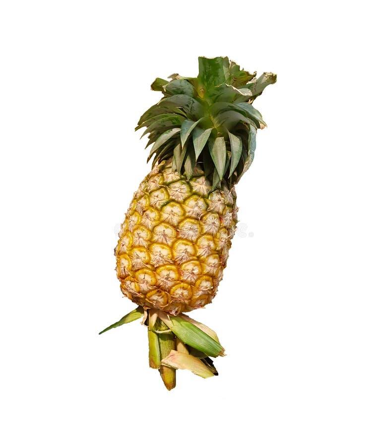 De ananas op een wit isoleert royalty-vrije stock foto