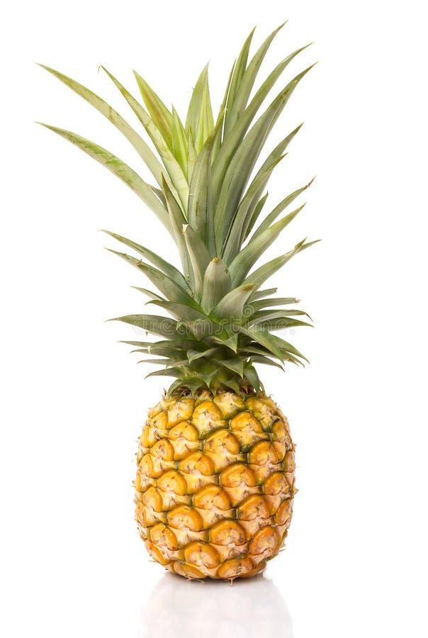 De ananas op wit isoleert achtergrond royalty-vrije stock afbeeldingen