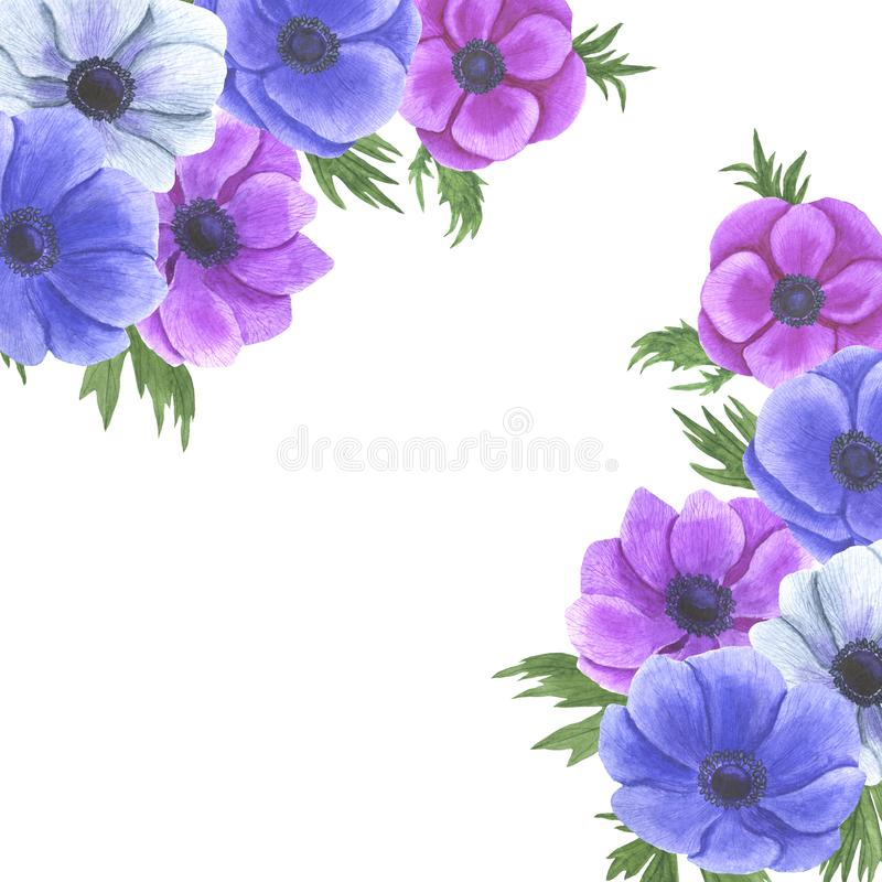 De anemoon bloeit de reeks van de waterverfillustratie van het het ontwerphuwelijk van de zomer botanische decoratie kaarten van  vector illustratie