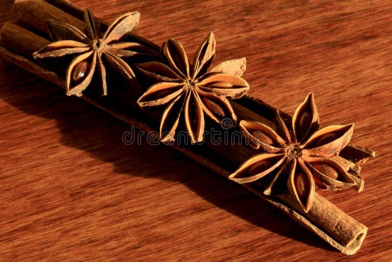 De anijsplant en de kaneel van de ster royalty-vrije stock afbeeldingen