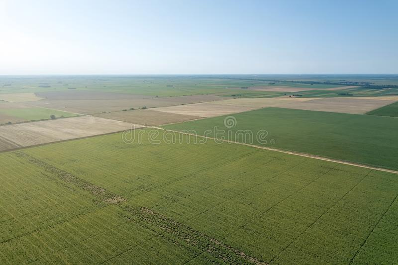 De Antenne van de zomergebieden Lucht groene gebiedsmening Landbouw fild stock foto's
