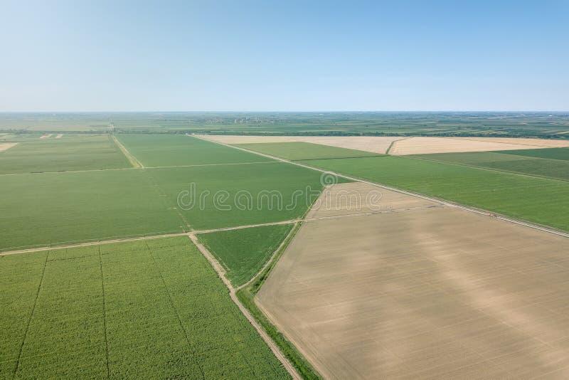 De Antenne van de zomergebieden Lucht groene gebiedsmening Landbouw fild stock foto