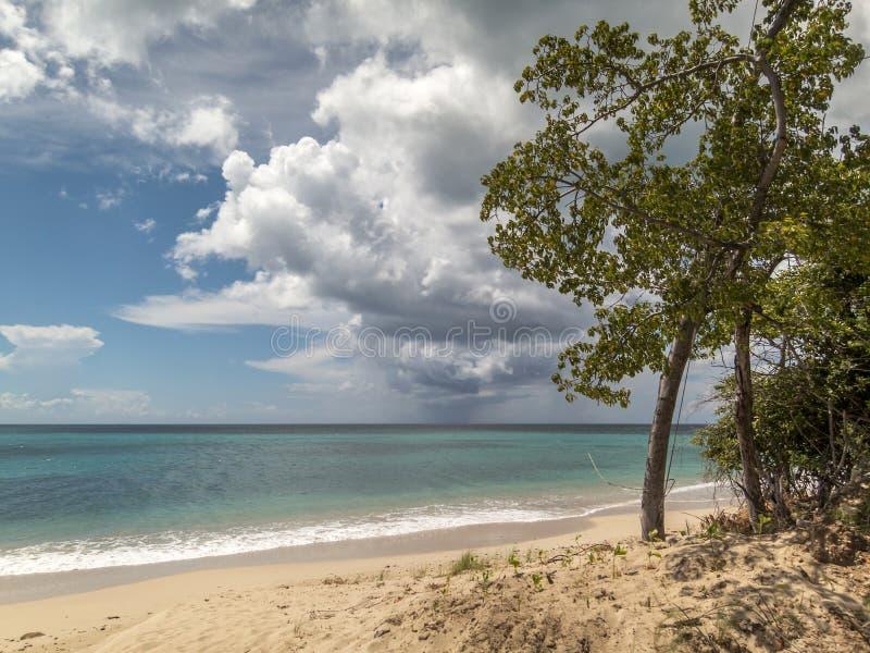 De Antigua van het keerdersstrand stock foto
