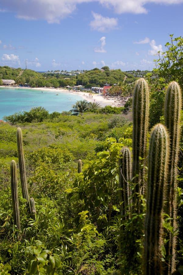 De Antillen, de Caraïben, Antigua, Lange Baai, Mening van Lange Baai & Strand royalty-vrije stock afbeelding