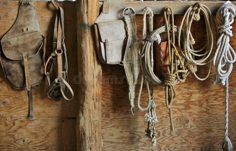 De Apparatuur van het paard royalty-vrije stock foto's