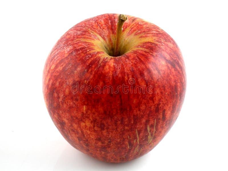 De appel van het feest stock foto's